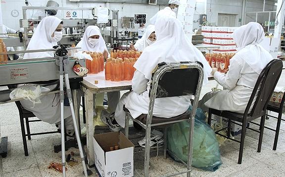 سازمان های مردم نهاد کشور از کارخانه فیروز بازدید کردند